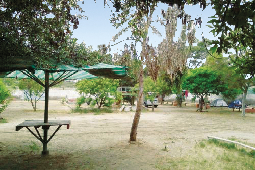 Camping Don Domingo