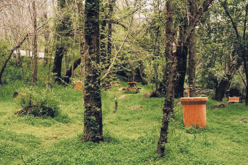 Camping Cascada de Las Ánimas