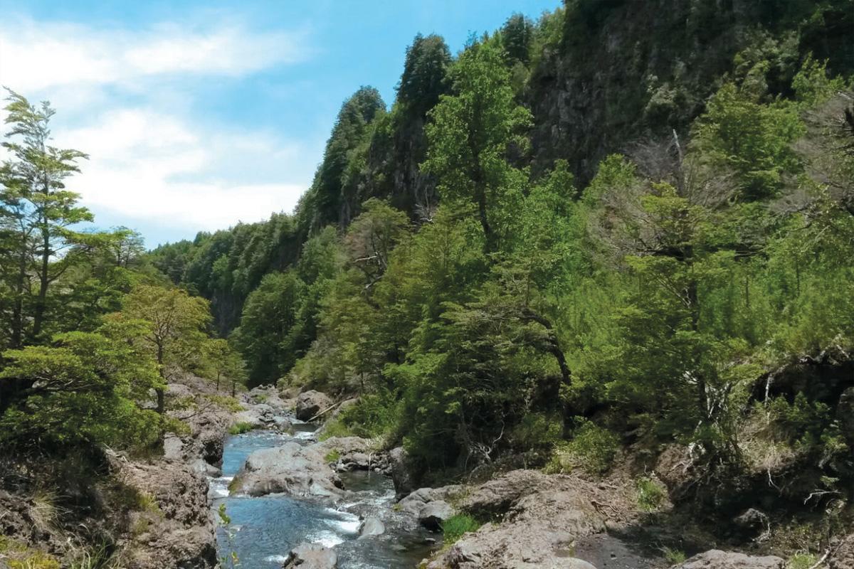 Camping Cascadas del Llaima