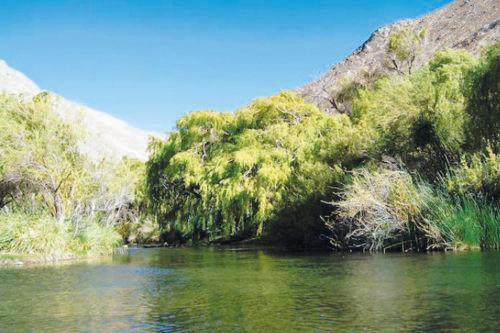 Camping Cochiguaz