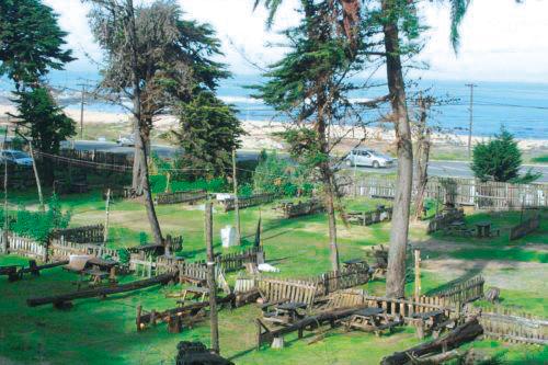 Camping El Bosque