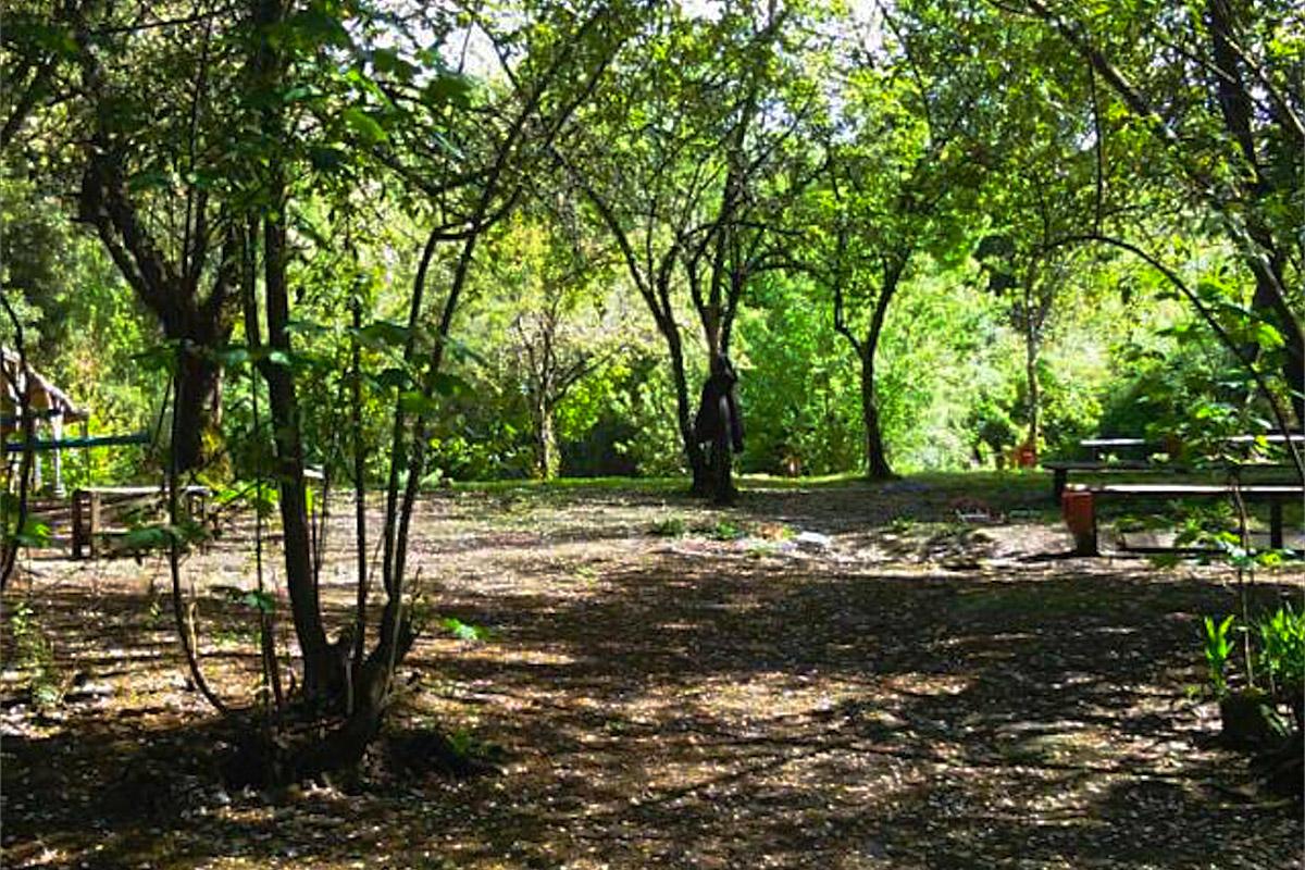 Camping El Bosque 2