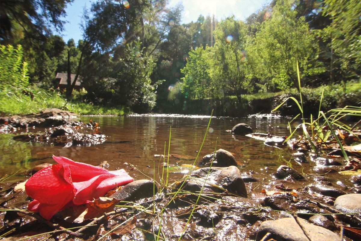 Camping Estero Cobulto
