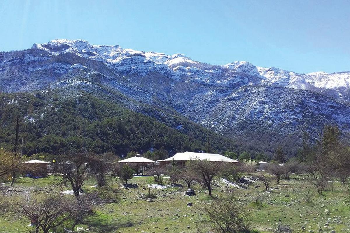 Camping Las Palomas