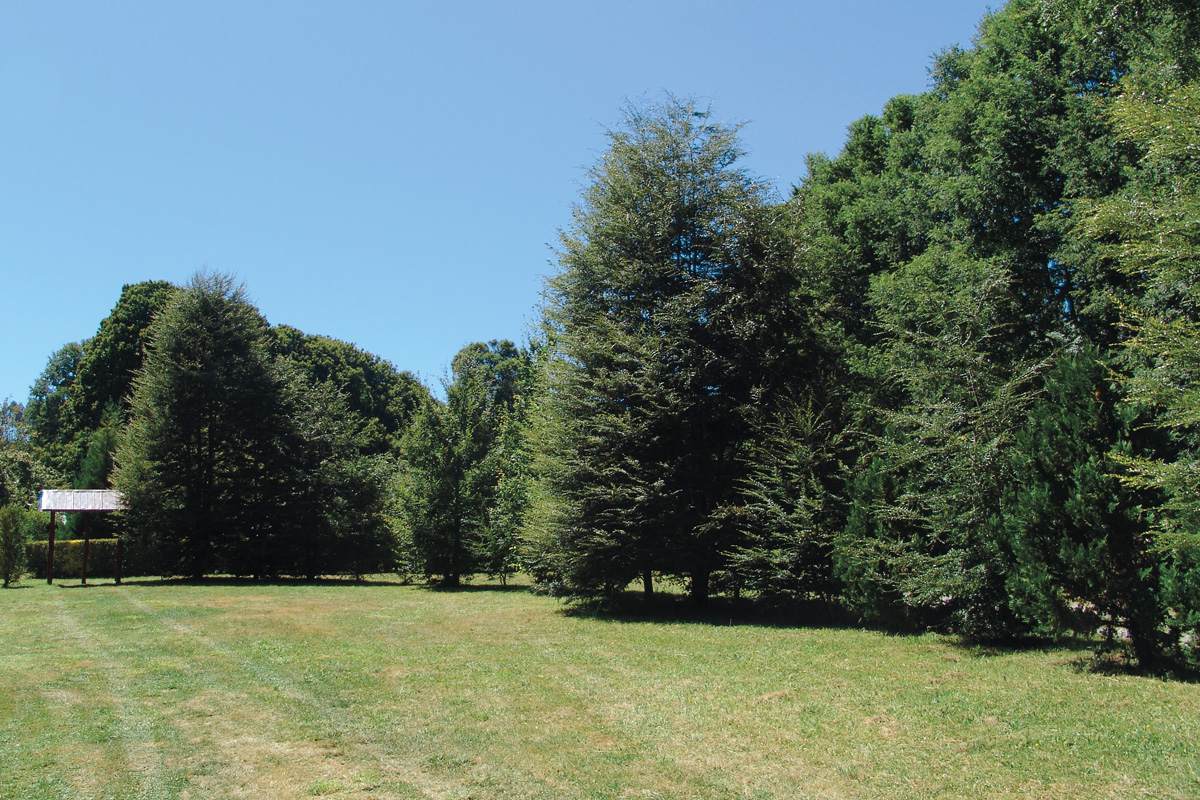 Camping Terranostra