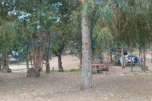 Camping Don José