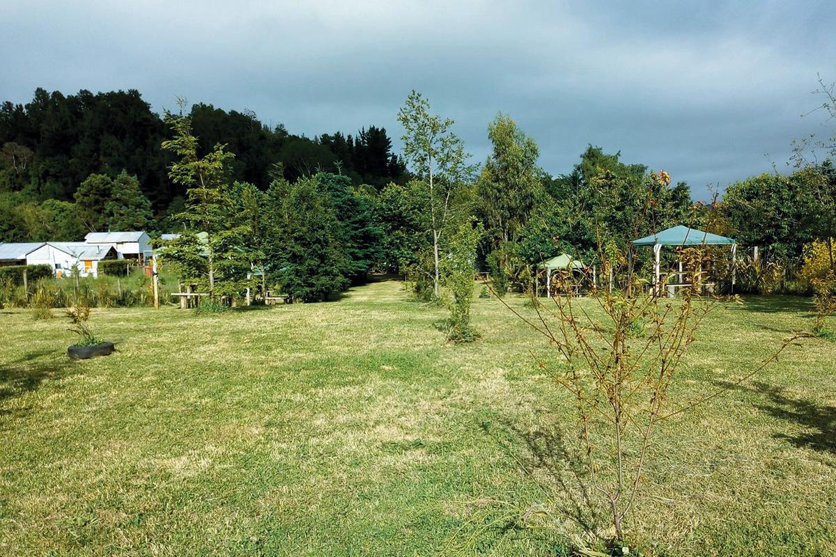 camping_piedra_azul3_1.jpg