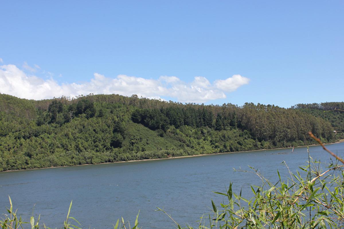 Camping Agua Del Obispo