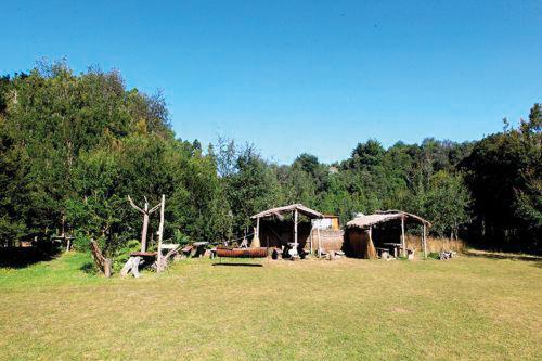 Camping Lugar de Encuentro
